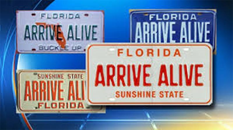 Bloomberg Arrive Alive Blog image-1.jpg